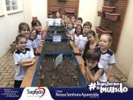 O plantio de manjericão - Infantil IV - Adriana