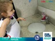 ESCOVAÇÃO E HIGIENIZAÇÃO - Higienização Flávia