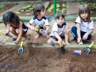 Projeto Vida Saudável - Integral 2017