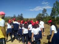 Saída Pedagógica: Sítio Pinheiros