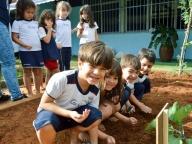 """""""Projeto Horta"""" do Integral – Plantação de tomates"""