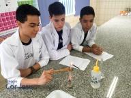 Aula no laboratório de Ciências: Fenômenos (1º Série A)