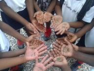 A paz em nossas mãos