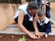 Cultivando Sabores - Plantio de Alface Lisa (Infantil 1B)