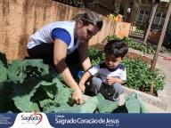Colheita e Degustação de Couve (Infantil 1C)