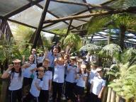 Estudo de Meio - Zoológico e Jardim Botânico de Bauru (1º ano)