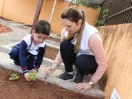 Cultivando Sabores - Plantio de Almeirão (Infantil 3A)