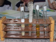 Aula prática de Ciências Físicas e Biológicas - 8º ano