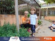 Colheita e Degustação de Hortelã (Infantil 2A)