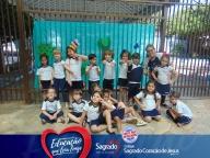 Contação de História (Projeto Sacola de Leitura) - Infantil 4A