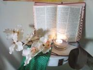 Reflexões Bíblicas (Fundamental II)