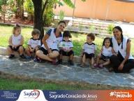 Plantio de Alface Crespa - Infantil 1B [2017]