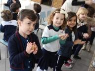 Pão de Minuto - Infantil 3 A e C
