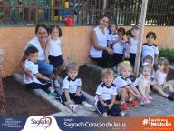 Plantio de Cebolinha - Infantil 1A [2017]