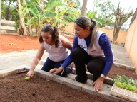 Cultivando Sabores - Plantio de Alface Crespa (Infantil 4C)