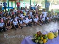 Campanha de Conscientização - Dia da Fruta