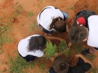 20161005 - Depoimentos sobre o plantio de árvores - 161